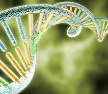 Scientists Discover A Low-Cost Way To Build Genomes From Scratch