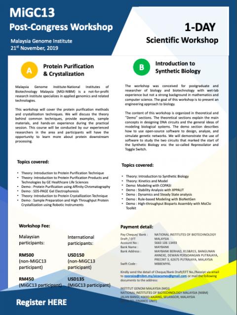 MiGC13 Post-Congress Workshop